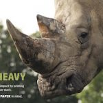 Rhino printed on heavy cardstock showing how to design with paper in mind